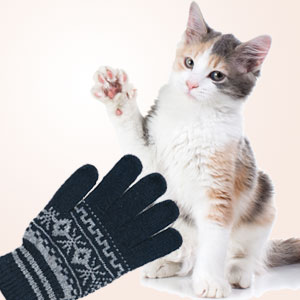 Kittens Mittens Toy Recipe