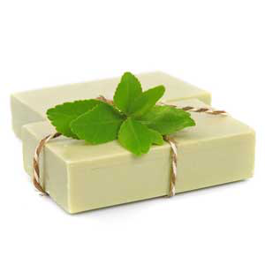 Peppermint Cold Process Foot Soap Recipe