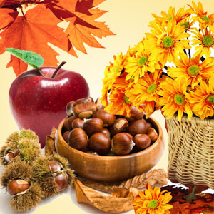 Autumn Wreath Type Fragrance Oil