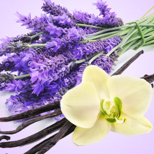 NG Vanilla Lavender Type Fragrance Oil