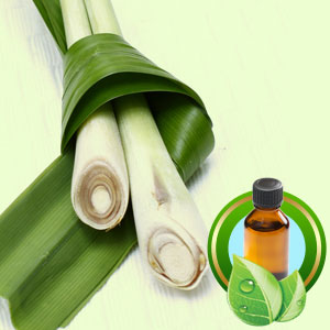 Lemongrass Guatamalan ESSENTIAL OIL