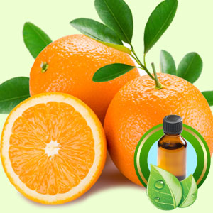Orange Midseason ESSENTIAL OIL