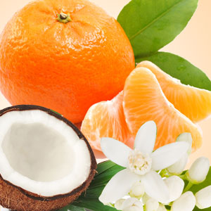Mandarin Coconut Fragrance Oil