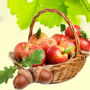 Apples and Oak Fragrance Oil