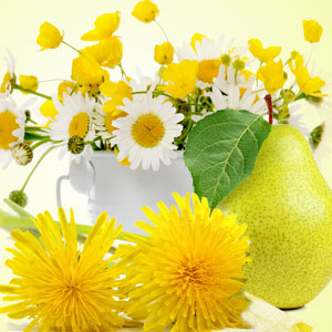 Dandelion Pear Fragrance Oil