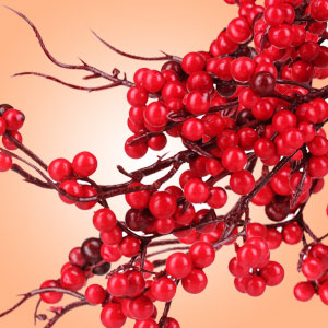 Twigs n Berries Fragrance Oil