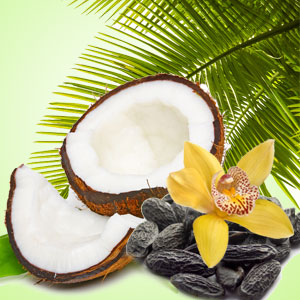 NG Exotic Coconut Type Fragrance Oil