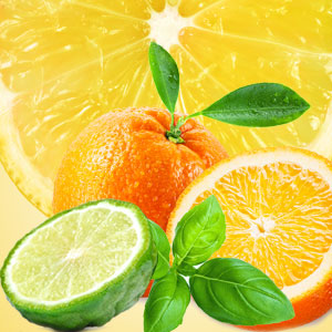 NG Cool Citrus & Basil Type Fragrance Oil