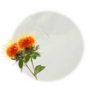 Safflower Oil Powder