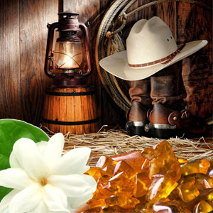 Wild Musk Type Fragrance Oil