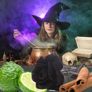 Witching Hour Fragrance Oil