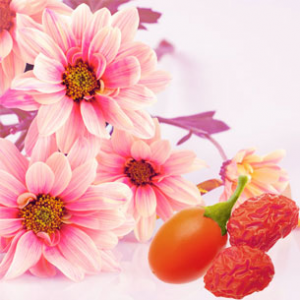 Pink Daisies & Goji Berries Fragrance Oil
