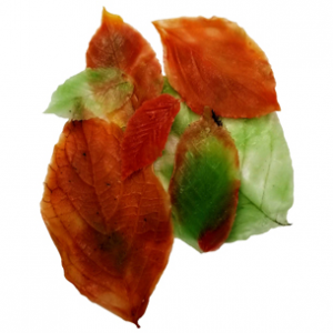 Fall Leaves Soap Recipe