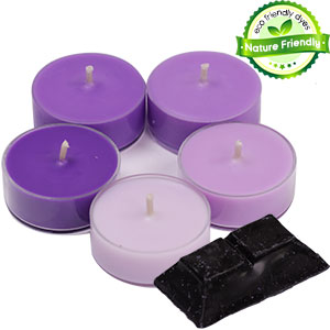 Nature Friendly Color Blocks- Violet