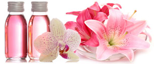 Pink Fragrances