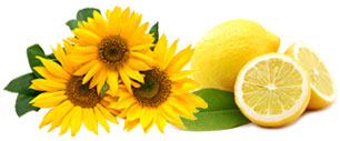 Yellow Fragrances